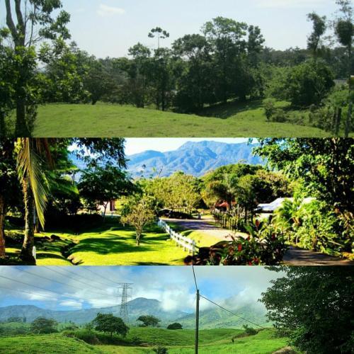big-property-sale-venecia-sancarlos-costa-rica026