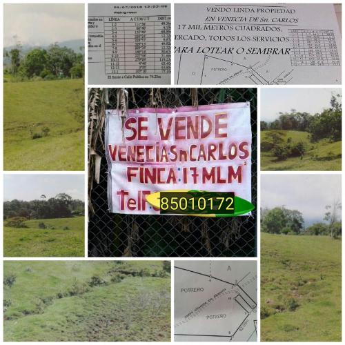 propertyclosetohotsprings_veneciasancarlos_costarica1