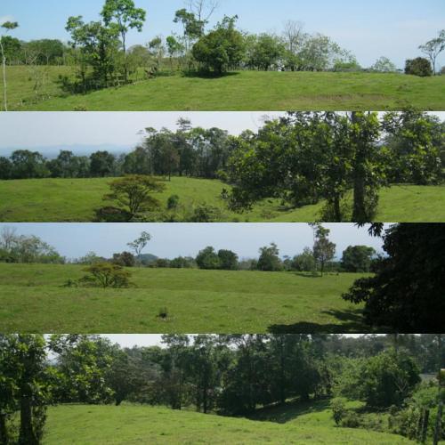 propertyclosetohotsprings_veneciasancarlos_costarica3
