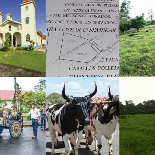 big-property-sale-venecia-sancarlos-costa-rica001