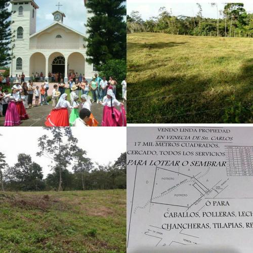 big-property-sale-venecia-sancarlos-costa-rica002
